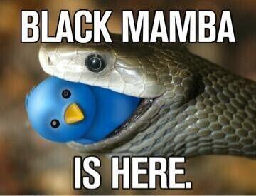 kobe-twitter-avatar