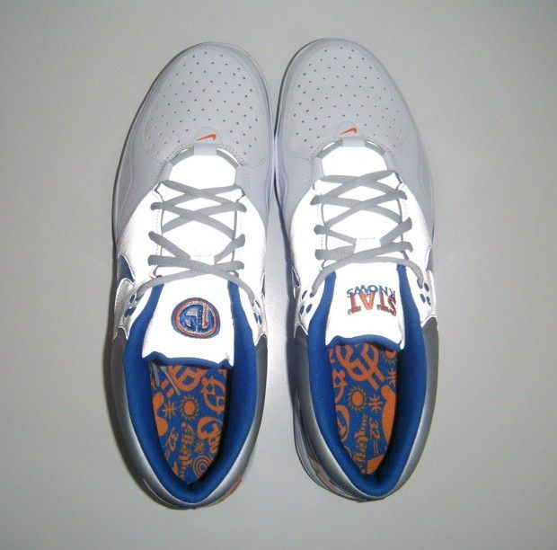 Nike Trainer 1.3 Amare Stoudemire STAT sample