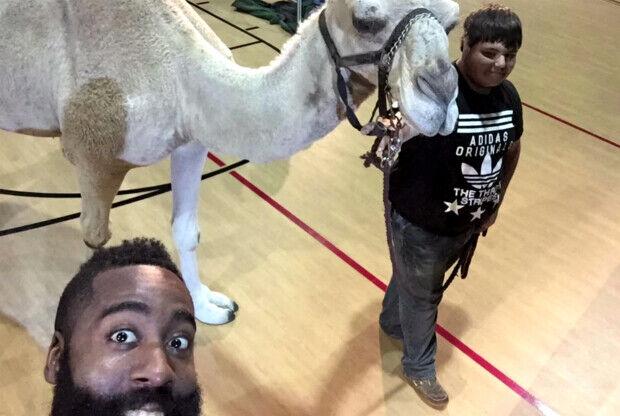 James Harden con un camello