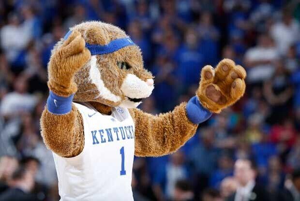 La mascota de la universidad de Kentucky